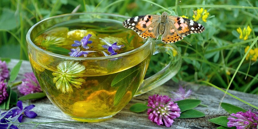 A cup of herbal tea and medicinal herbs to aid your cycles and seasons.